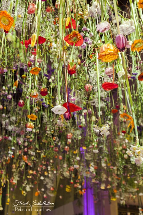 Rebecca-Louise-Law-Installation-6-Flowerona