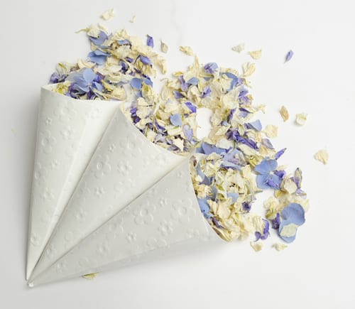ShropshirePetals.com-Confetti-Cones-with-Pick-and-Mix-Summer-Sky-and-Frosted-Blue-Flowerona