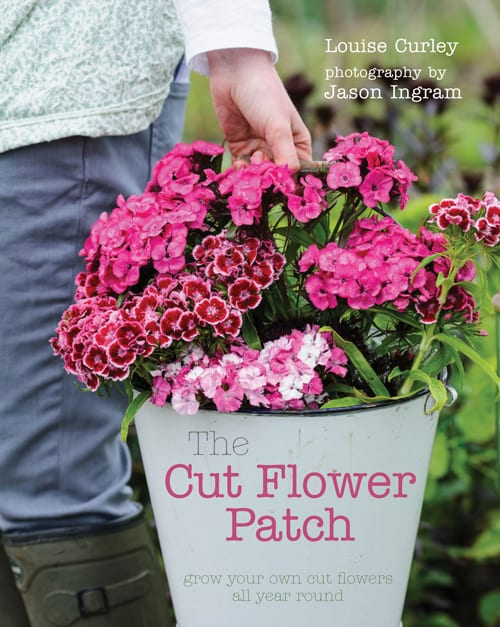 The-Cut-Flower-Patch-Louise-Curley