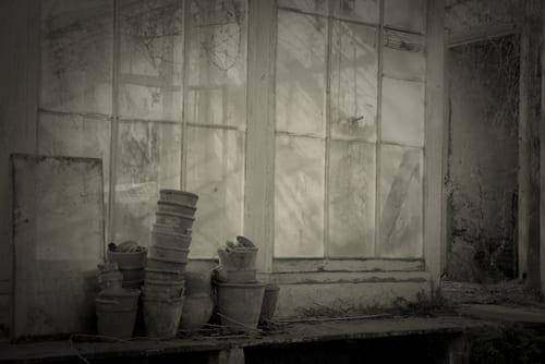 Pentillie_09-637-Rachel-Warne-Flowerona