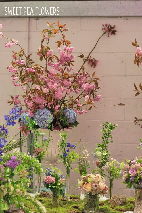 Sweet-Pea-Flowers-A-Most-Curious-Wedding-Fair-April-2014-Flowerona
