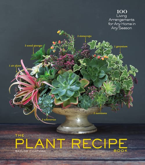 The-Plant-Recipe-Book-Baylor-Chapman