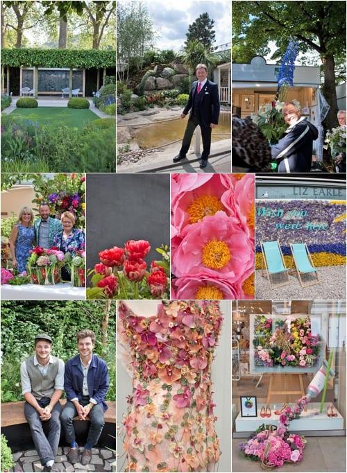 RHS Chelsea Flower Show Chelsea in Bloom Chelsea Fringe 2014 Flowerona