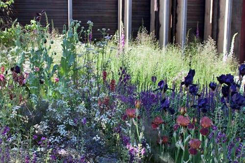 cloudy bay sensory garden rhs chelsea flower show