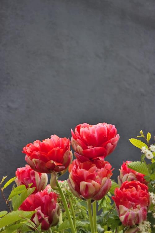 Flora-Fresh-Garden-by-Gucci-&-Rebel-Rebel-Chelsea-2014-Flowerona-10