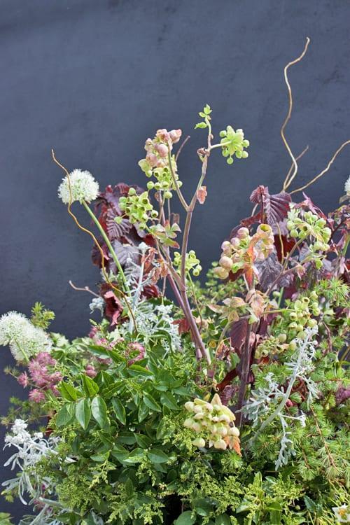 Flora-Fresh-Garden-by-Gucci-&-Rebel-Rebel-Chelsea-2014-Flowerona-14