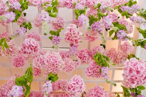 Hayford-&-Rhodes-Floral-Designs-Flowerona-8