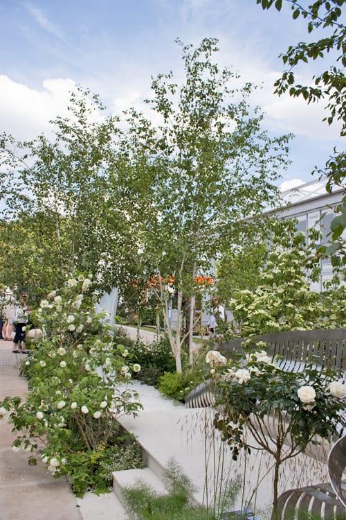 Jo-Thompson-Fresh-Garden-London-Square-RHS-Chelsea-Flower-Show-2014-Flowerona-9