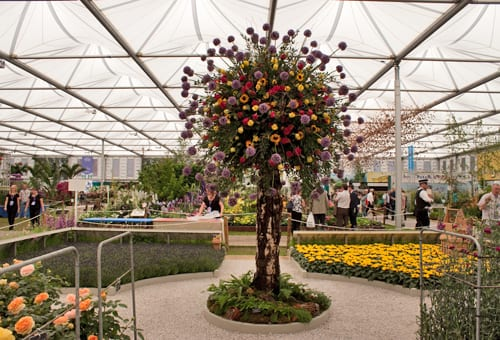 Marks-&-Spencer-Stand-RHS-Chelsea-Flower-Show-2014-Flowerona-7