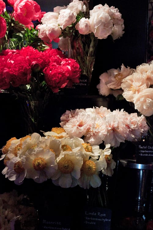 Chelsea Fringe 2014 – Passion for Peonies event by florist Neill Strain