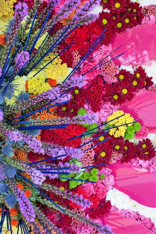 Simon-Lycett-RHS-Chelsea-Flower-Show-2014-Flowerona-2