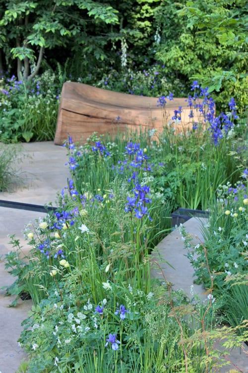 The-Homebase-Garden-Adam-Frost-RHS-Chelsea-Flower-Show-2014-Flowerona-1