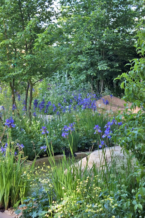 The-Homebase-Garden-Adam-Frost-RHS-Chelsea-Flower-Show-2014-Flowerona-4