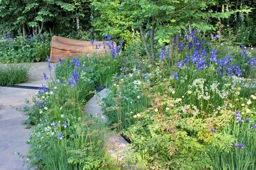 The-Homebase-Garden-Adam-Frost-RHS-Chelsea-Flower-Show-2014-Flowerona-6