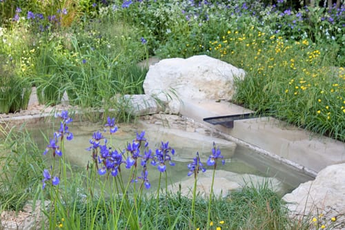 The-Homebase-Garden-Adam-Frost-RHS-Chelsea-Flower-Show-2014-Flowerona-7