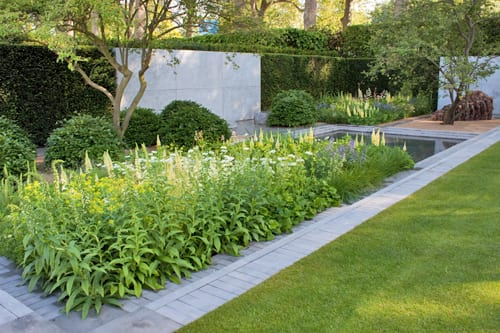 The-Laurent-Perrier-Garden-Luciano-Giubbilei-RHS-Chelsea-Flower-Show-2014-Flowerona-5