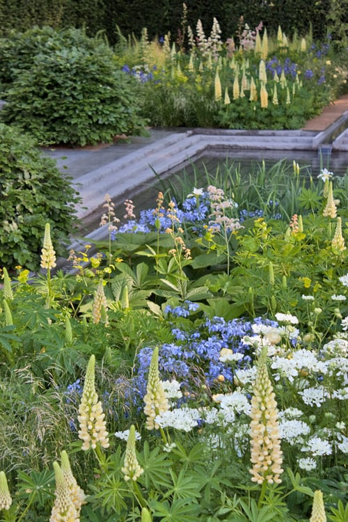 The-Laurent-Perrier-Garden-Luciano-Giubbilei-RHS-Chelsea-Flower-Show-2014-Flowerona-6