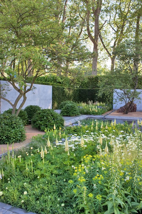 RHS Chelsea Flower Show 2014 – The Laurent-Perrier Garden – Best Show Garden