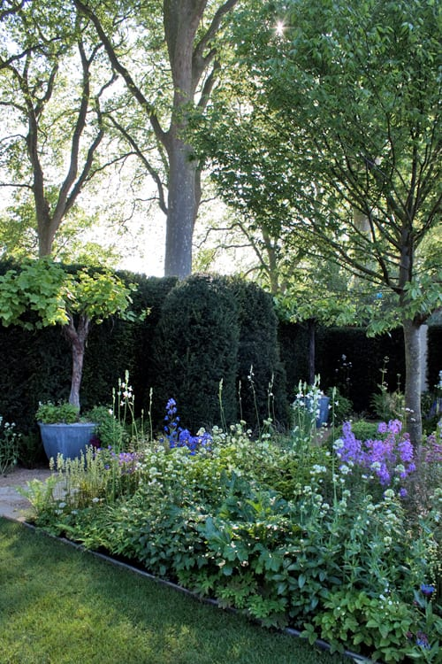 The-M&G-Garden-Cleve-West-RHS-Chelsea-Flower-Show-2014-Flowerona-7