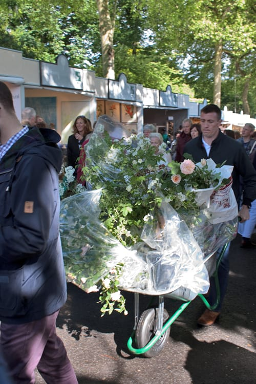 The-Sell-Off-RHS-Chelsea-Flower-Show-2014-Flowerona-10