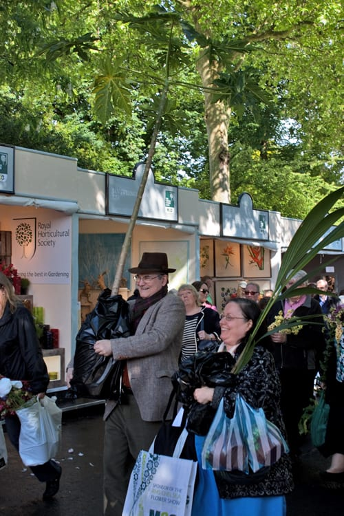 The-Sell-Off-RHS-Chelsea-Flower-Show-2014-Flowerona-17