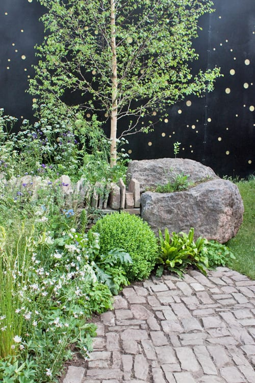 Vital-Earth-The-Night-Sky-Garden-David-Rich-&-Harry-Rich-RHS-Chelsea-Flower-Show-2014-Flowerona-5