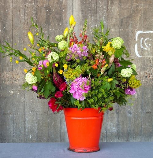 British-Flowers-Week-2013-Scarlet-&-Violet-1