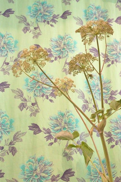 Designers-Guild-May-2014-Flowerona-6
