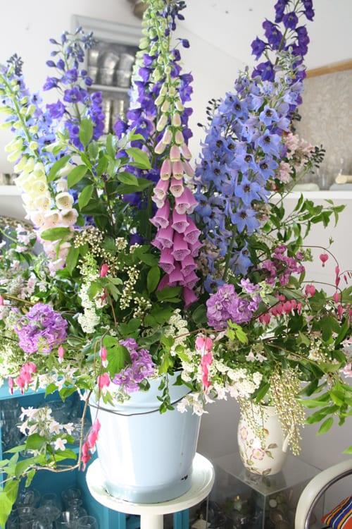 Jo-Wise-Floral-Circus-Flowerona-10