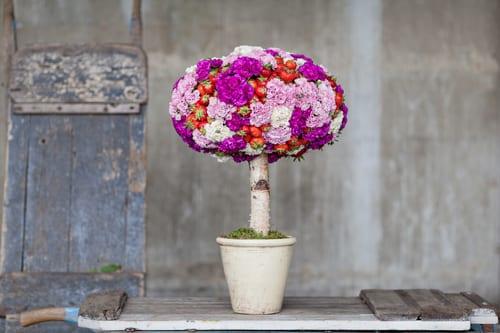 Simon-Lycett---tree-of-garden-pinks-and-strawberreis