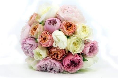 Todich-Floral-Design-Flowerona-4