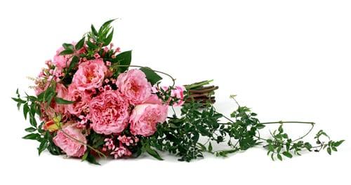 Todich-Floral-Design-Flowerona-5