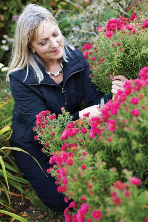 Paula-Pryke-Garden-Flowers