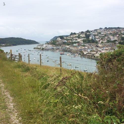 Snapes-Point-Salcombe-Flowerona-3a