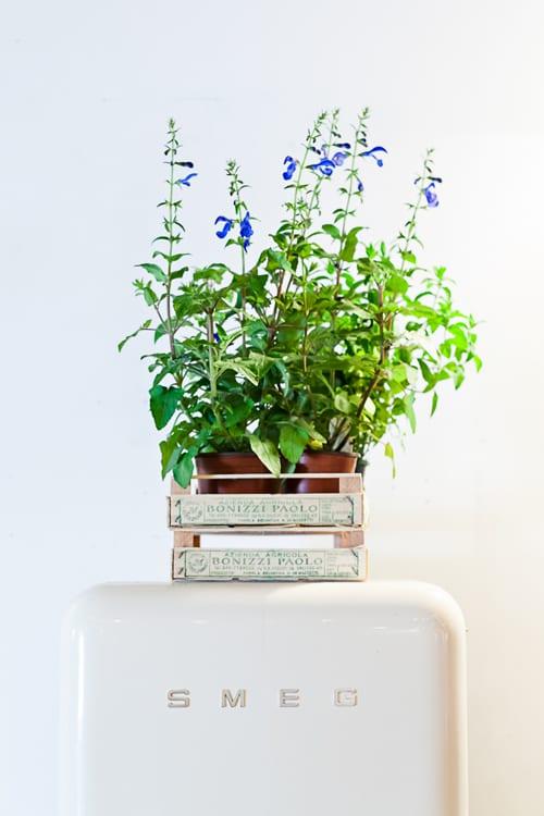 Social-Media-for-Florists-Workshop-Flowerona-13