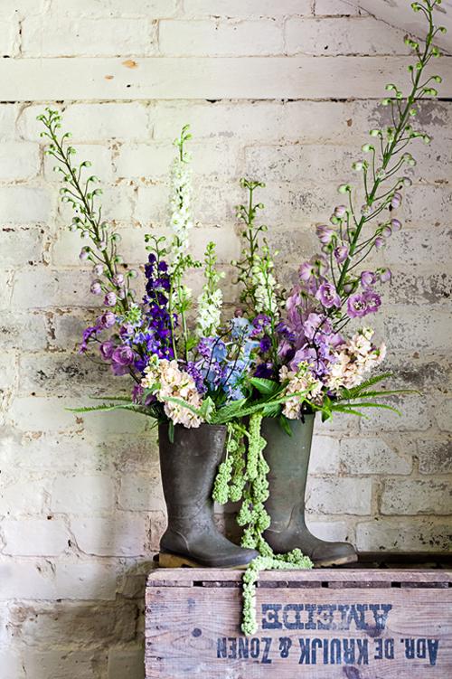 Flowerona-Kate-Avery-Delphinium-3