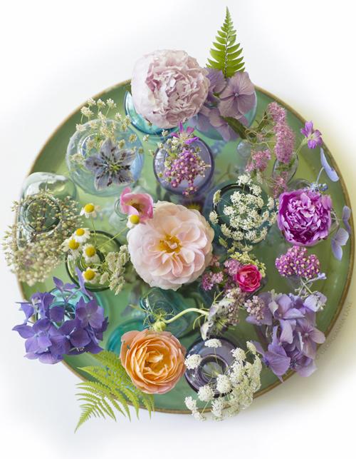 Georgianna-Lane-Summer-Flowers