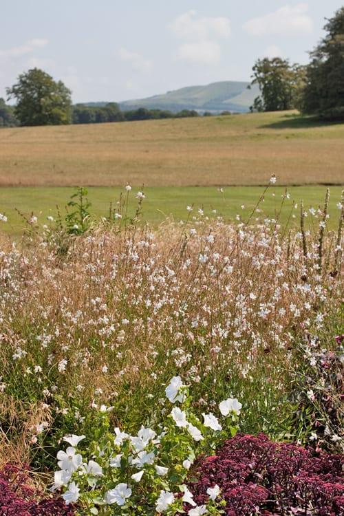 Glyndebourne-Flowerona-8