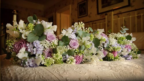 Joanne-Truby-Flowerona-1