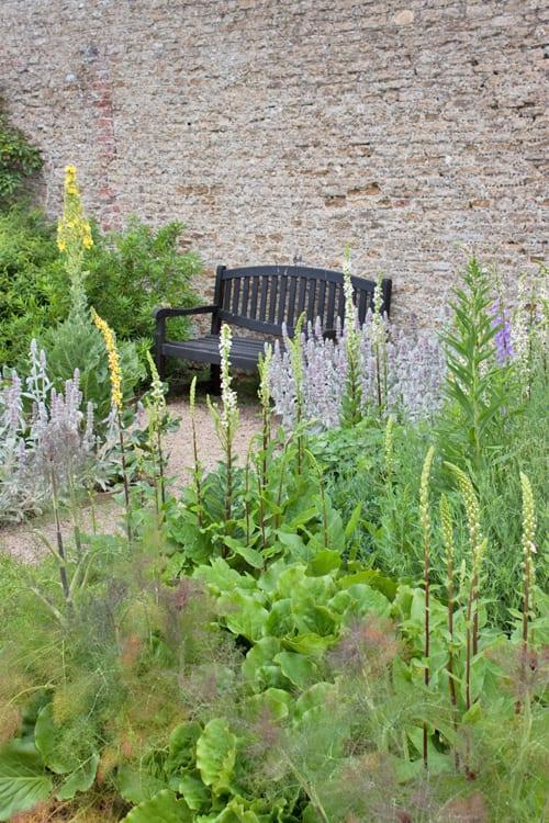 Loseley-Park-Gardens-Flowerona-13