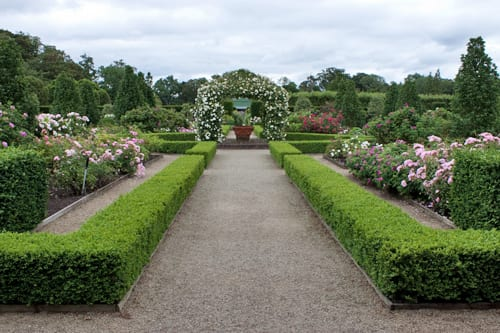 A summer visit to the beautiful gardens at Loseley Park in Surrey