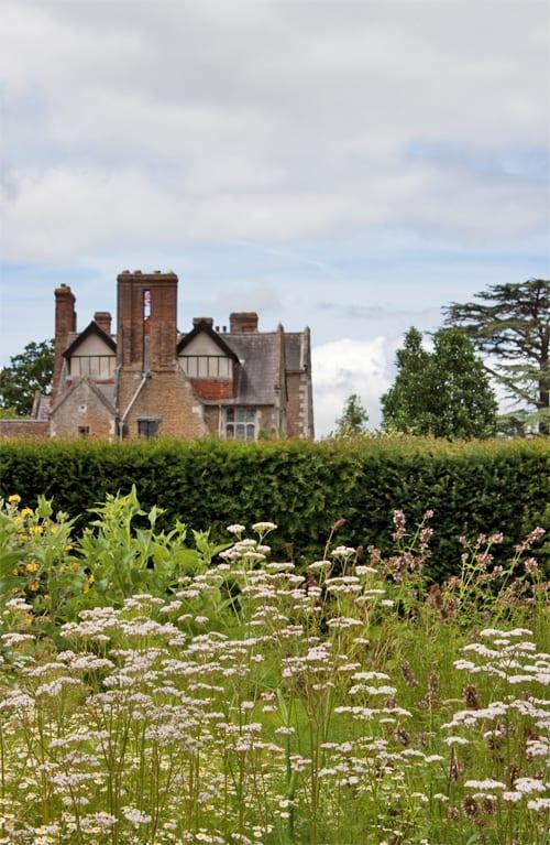 Loseley-Park-Gardens-Flowerona-4