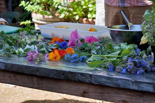 Petersham-Nurseries-Edible-Flowers-Workshop-Flowerona-11
