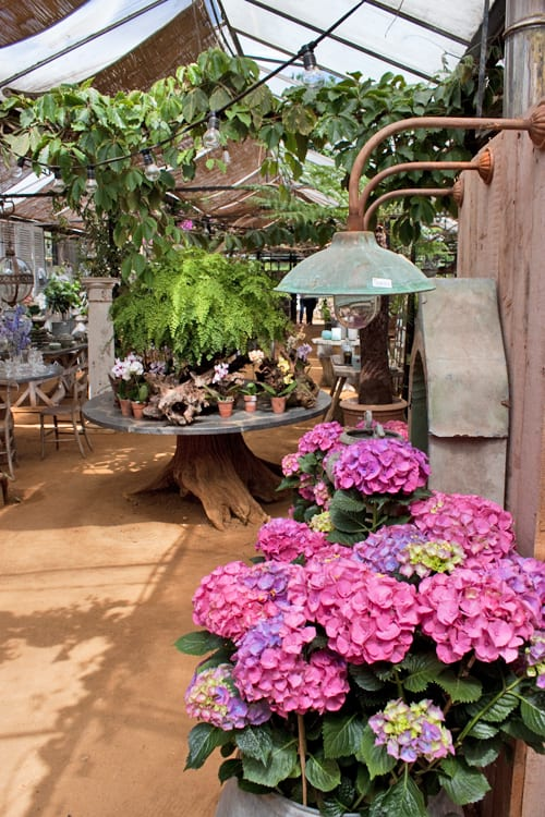 Petersham-Nurseries-Flowerona-4