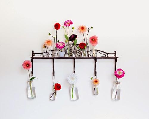 Flowerona Vanessa Birley Dahlia-1