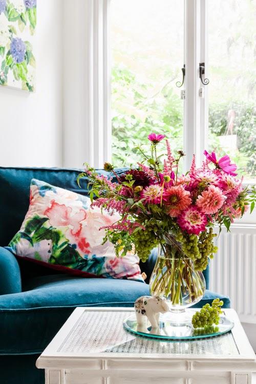 Flowerona Vanessa Birley Dahlia-23