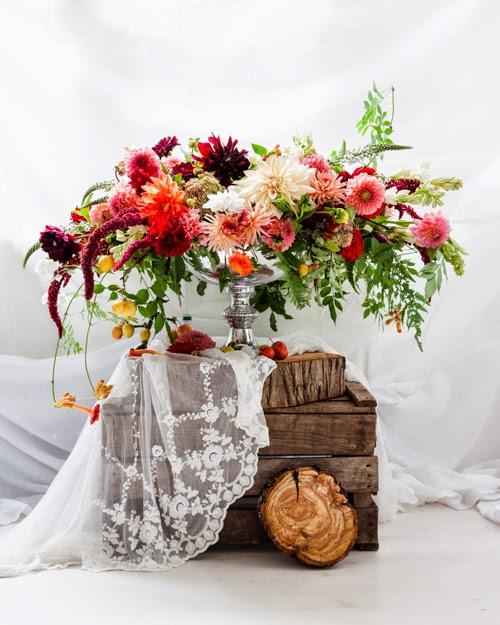 Flowerona Vanessa Birley Dahlia-8