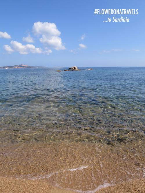 Sardinia-Flowerona-7