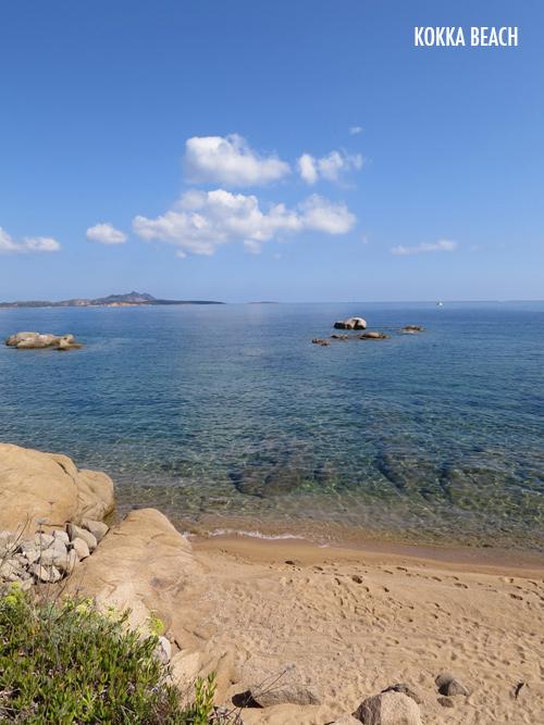 Sardinia-Flowerona-9