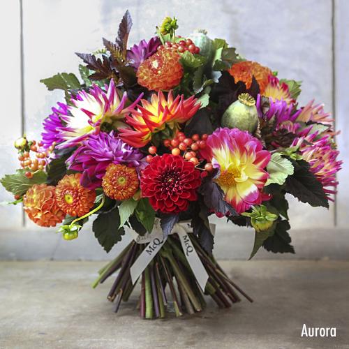 Aurora-AW14-McQueens-Bouquet
